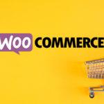 E-Commerce : Pratique avec Woocommerce pour comprendre les produits suggérés et les ventes croisées.